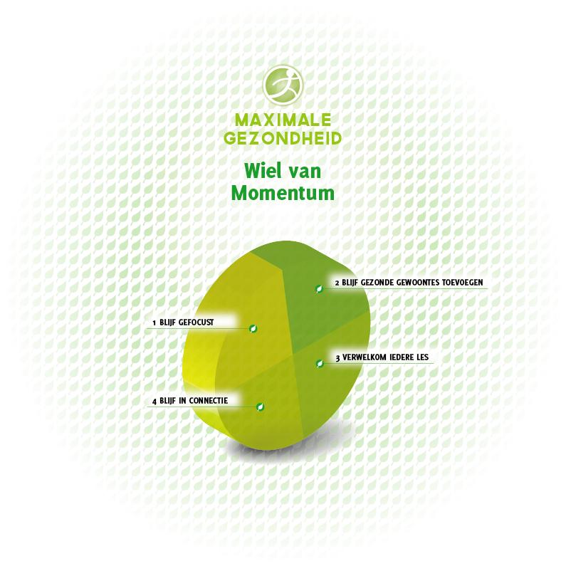 Maximale_Gezondheid_Infographics_Maart2014_Wiel_van_Momentum